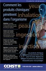Affiches : Comment les produits chimiques pénètrent dans l'organisme