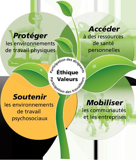 Protéger les environnements de travail physiques. Accéder à des ressources de santé personnelles. Soutenir les environnements de travail psychosociaux. Mobiliser les communautés  et les entreprises.